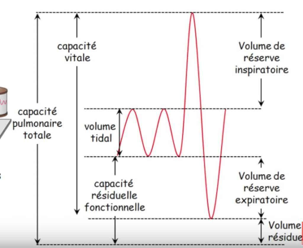 respiration volume courant
