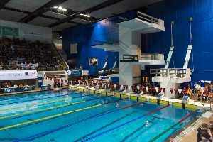 competition natation