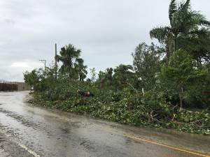 Apres ouragan maria
