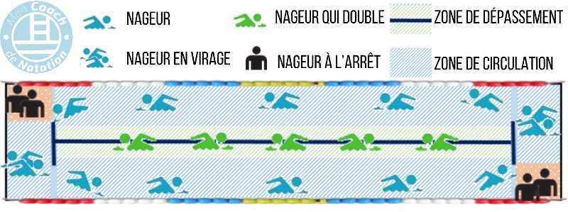 règles de circulation ligne d'eau swim etiquette